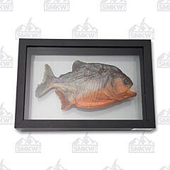 Museum Quality Genuine Piranha